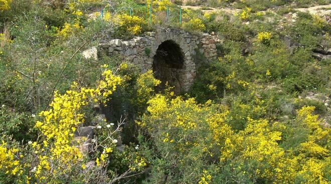 Ponti di Sant'Anna