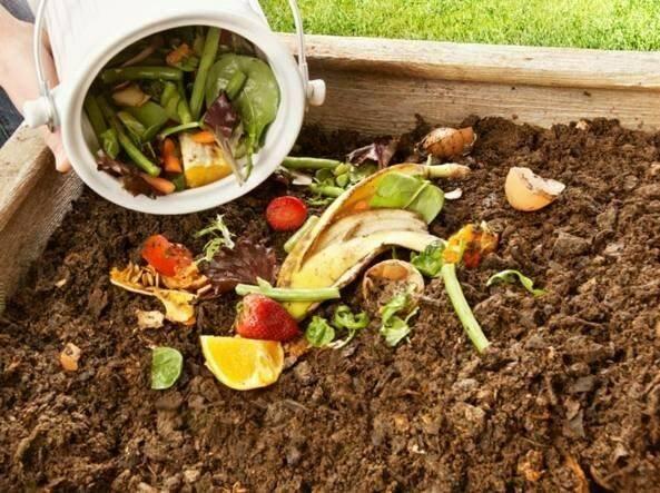 Produzione di compost dai rifiuti organici e vegetali.