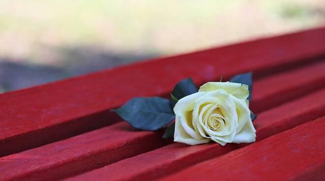 Una rosa posata su una panchina rossa.