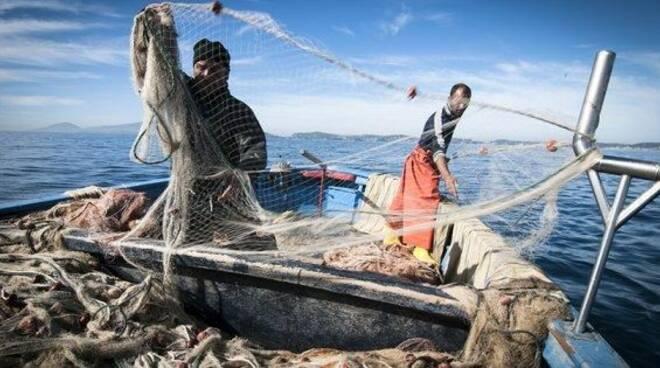 Pescatori stagionali di acciuga con la lampara.