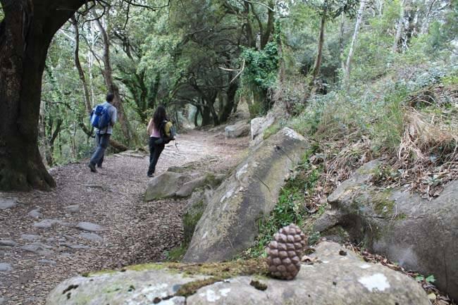 Trekking da Rapallo a Chiavari.