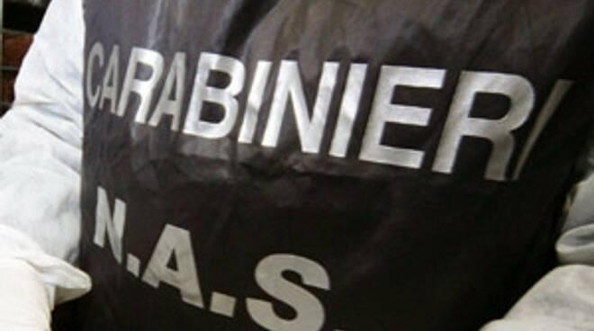 carabinieri, nas, militari