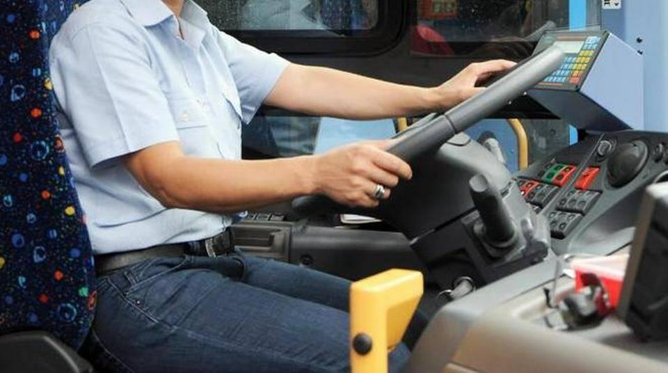 autista, bus, mezzo pubblico