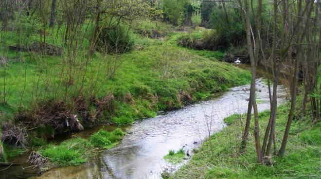 Il Rio Remigiano a Cogorno.