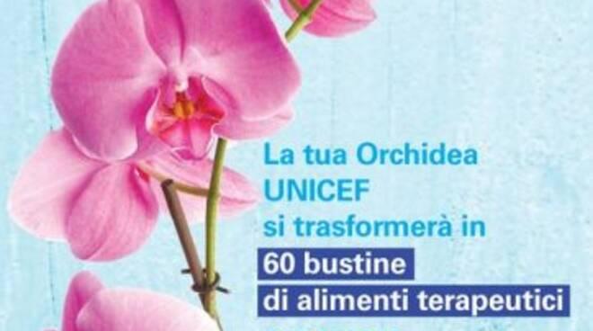 Un orchidea di Unicef contro la malnutrizione dei bambini.