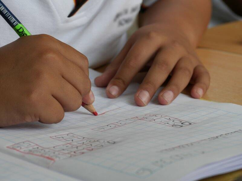 bambina, elementari, scuola