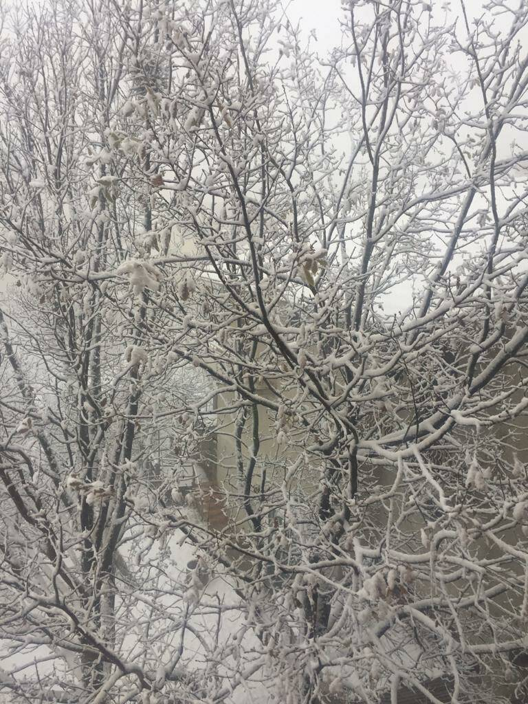 neve, entroterra