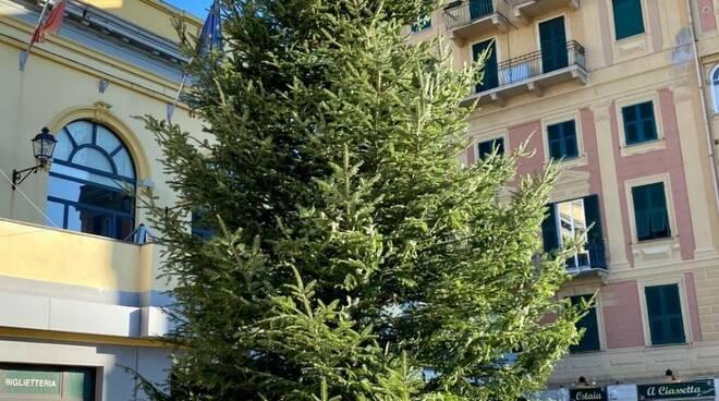 piazza molfino, albero di natale, rapallo