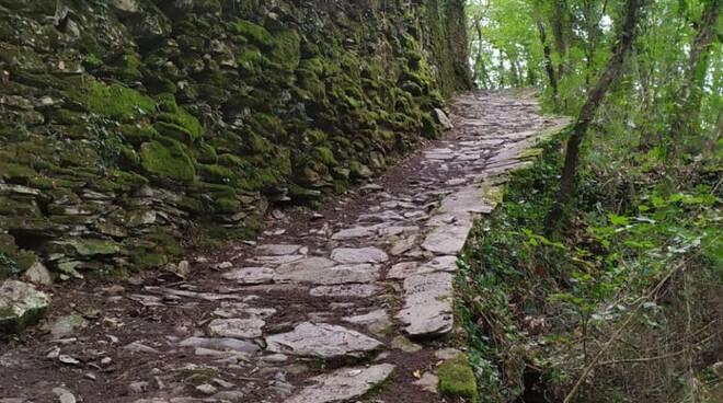 sentiero, chiavari, percorso