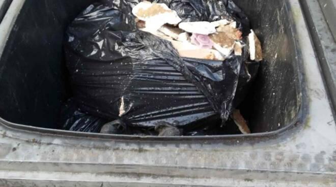 recco, cassonetti, rifiuti