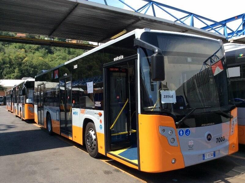 bus, amt, trasporti