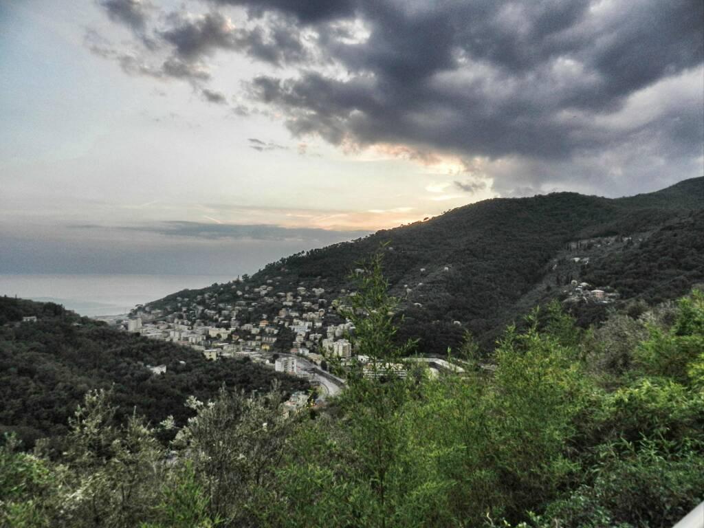 panorama, recco, golfo paradiso (credits Mangialonga)