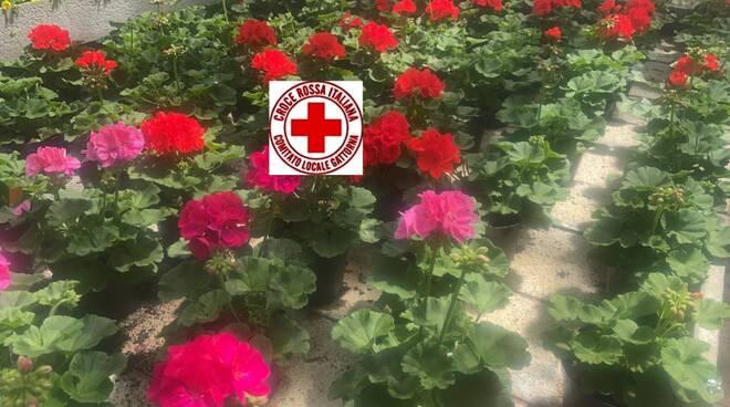 Croce rossa di Gattorna