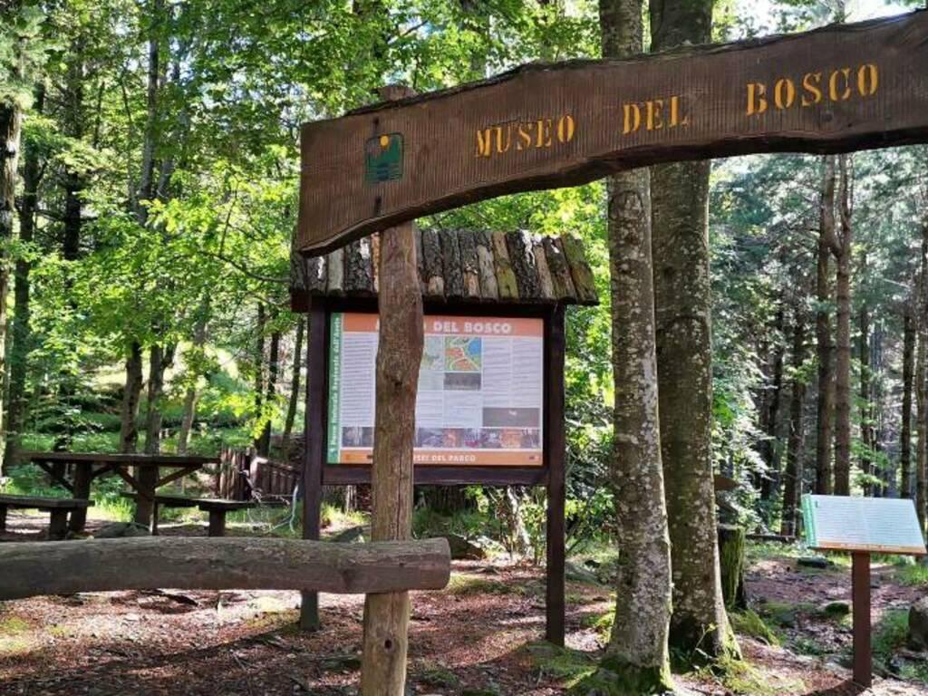 lago delle lame, rezzoaglio, museo del bosco