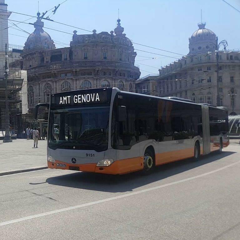 amt, bus, tpl