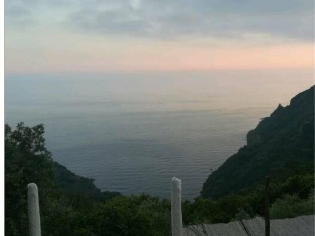 escursione parco di Portofino