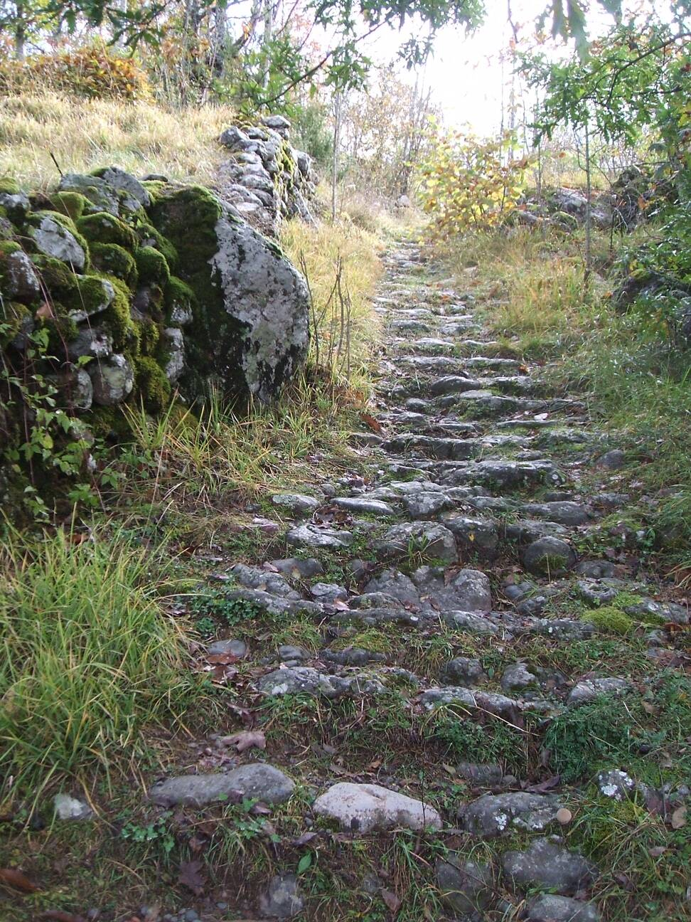 sentiero Rezzoaglio