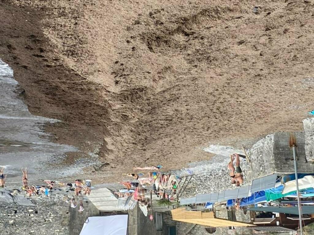 spiaggia invasa da alghe