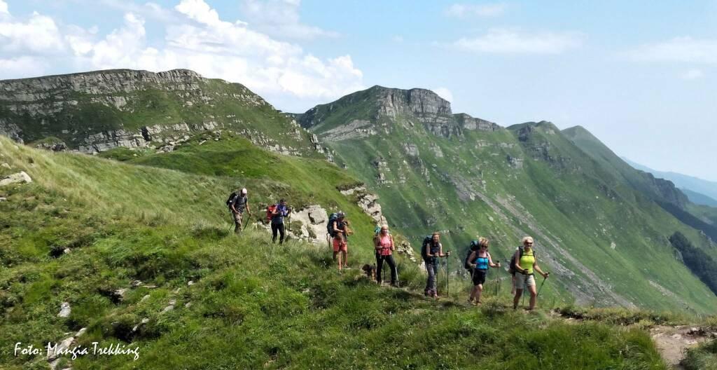 trekking, sentiero, camminata