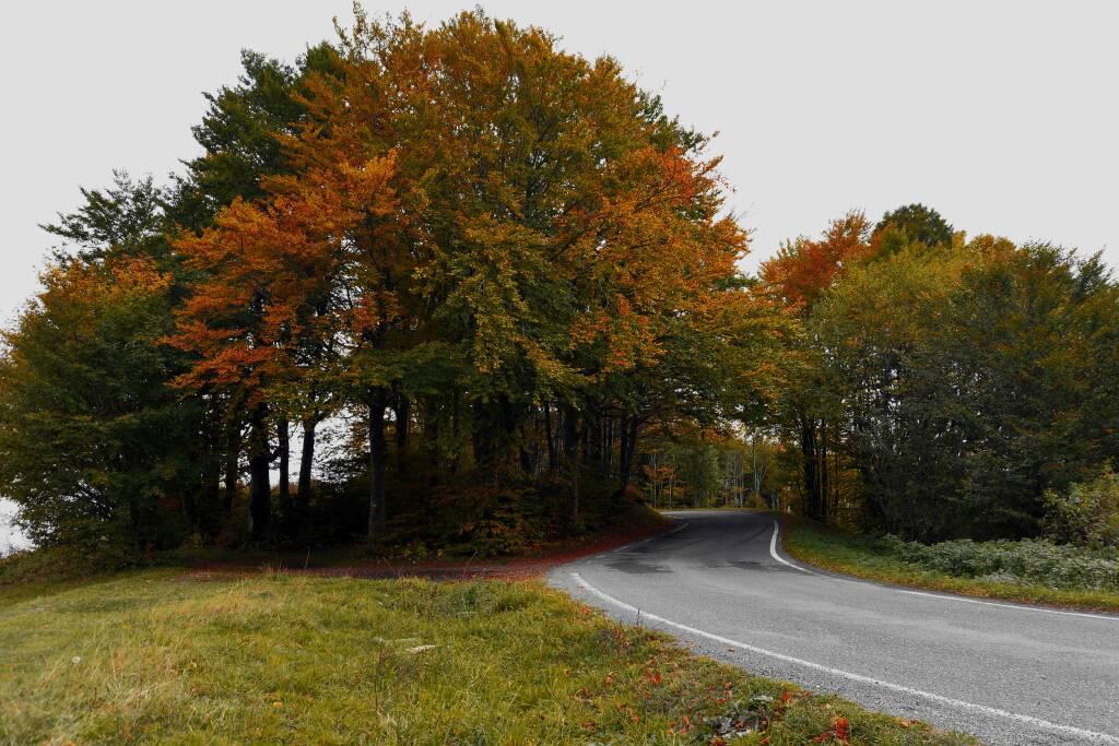 autunno val d aveto - piero valle