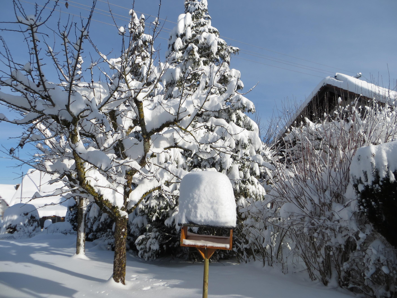 Camogli: i saluti da Tuningen con immagini suggestive della neve