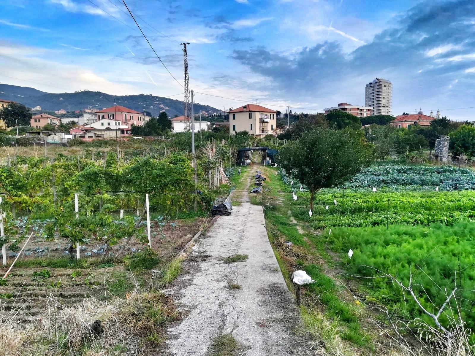 Lavagna: Diga Perfigli, in consiglio comunale la proposta di stop al progetto